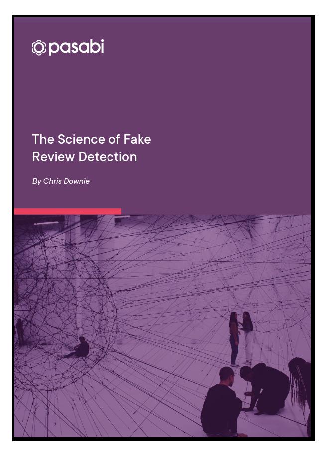 Pasabi-Fake-Reviews-Detection-cover2